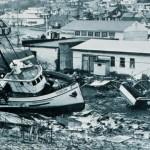 Effetti prodotti dallo tsunami dell